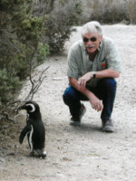 Penguins have the right of way in Argentina.